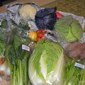 ふるさと納税の野菜宅配はお勧め