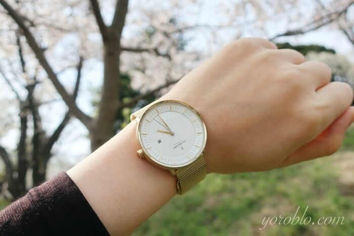 Nordgreen(ノードグリーン)の腕時計レビュー